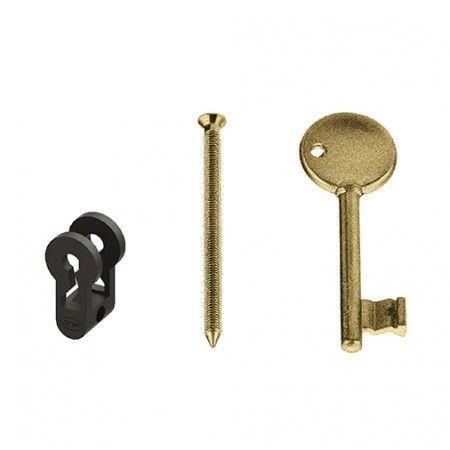 Conversor em nylon -1 de fechadura de cilindro em chave normal - Raw Gold