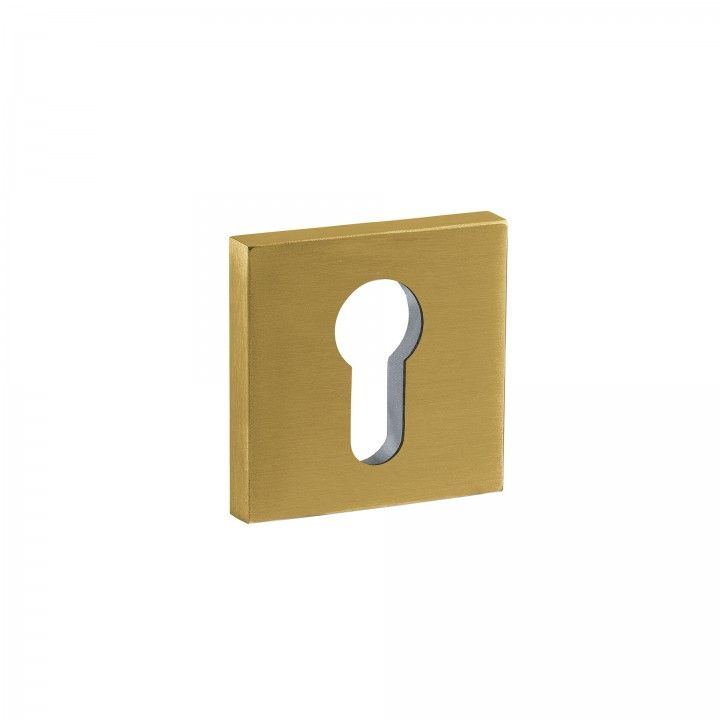 Entrada para cilindro europeu - 50x50mm - Titanium Gold