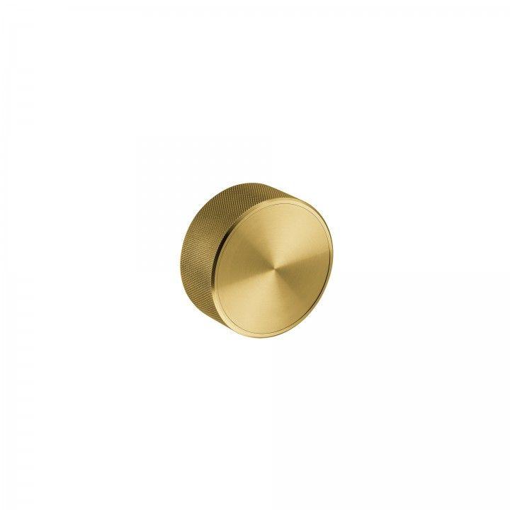 Fixed knob - Titanium Gold