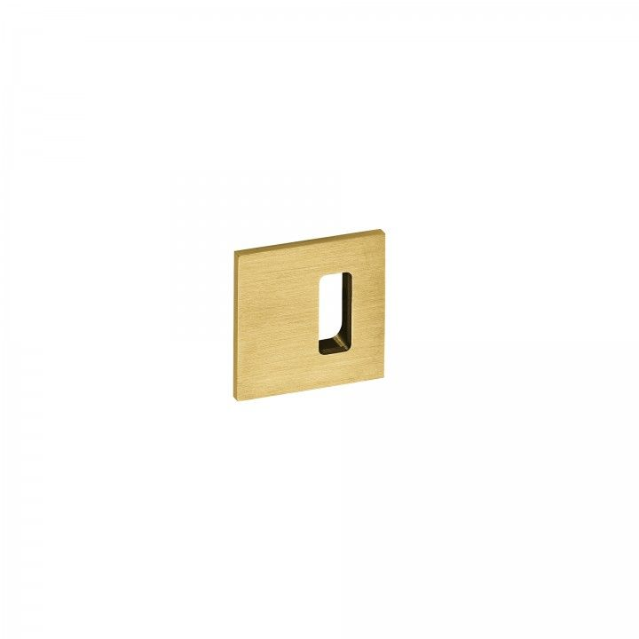 Entrada de chave normal SLIM - Titanium Gold